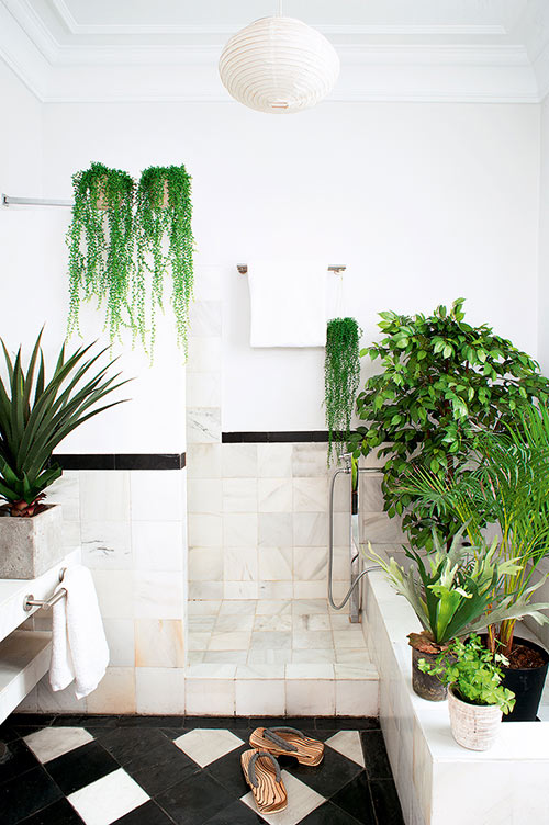 Image Result For Guest Bathroom Wall Decor Ideas