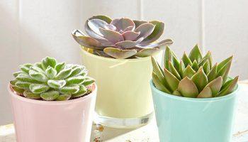 pastel kleuren maak je huis lente-proof – urstyle.nl