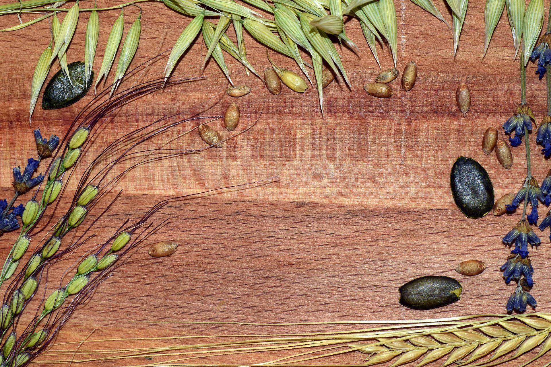 rijst brood en graanproducten - vitamine b1